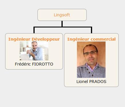 Outils de gestion - Organigramme hiérarchique